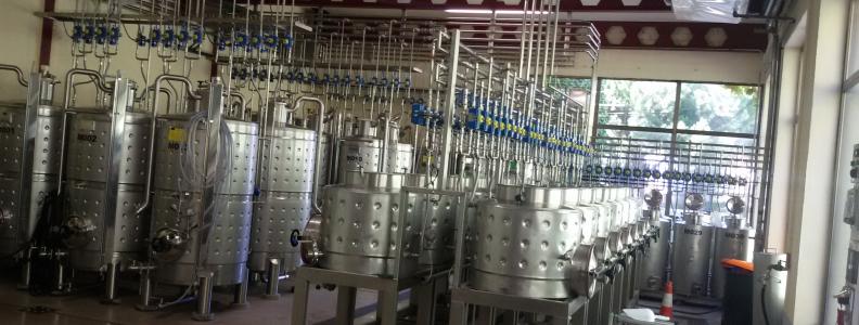 Un grupo de empresas se une para mejorar la competitividad de los vinos.