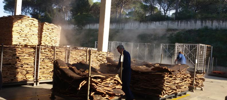 Vinysost estudia la manera de hacer vinos más sostenibles